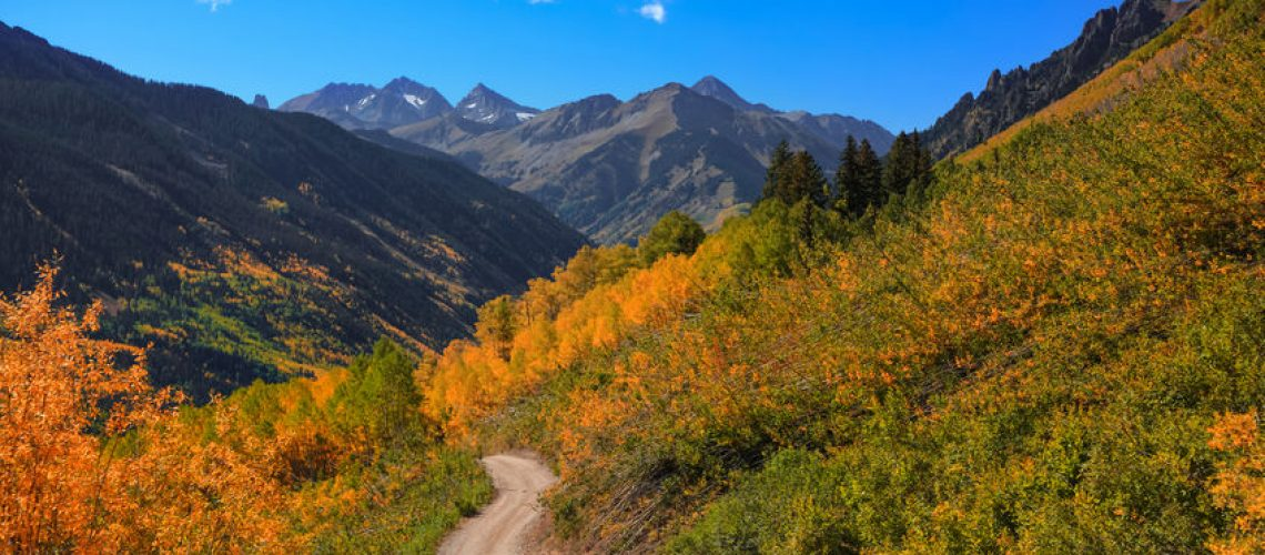 Fall Colors on Ophir Pass